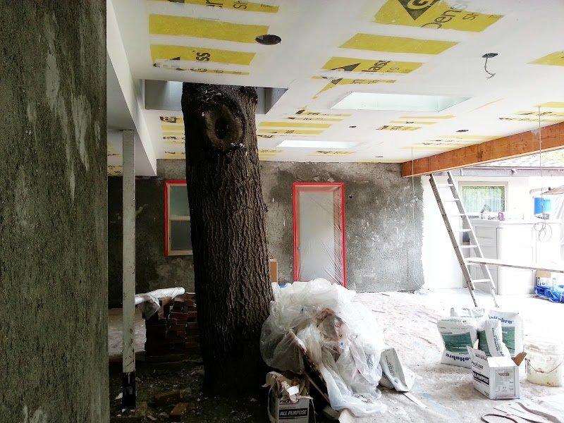 New_Patio_Around_Oak_Tree_San_Gabriel_CA_06